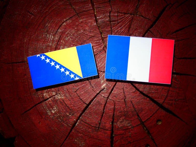 La Bosnie-Herzégovine diminuent avec le drapeau français sur une OIN de tronçon d'arbre image stock