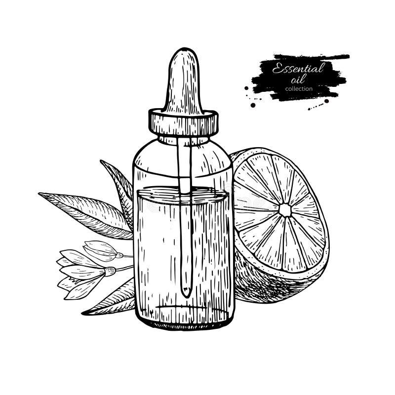 La botella de aceite esencial del limón y la fruta del limón dan el ejemplo exhausto del vector Dibujo aislado para el tratamient stock de ilustración
