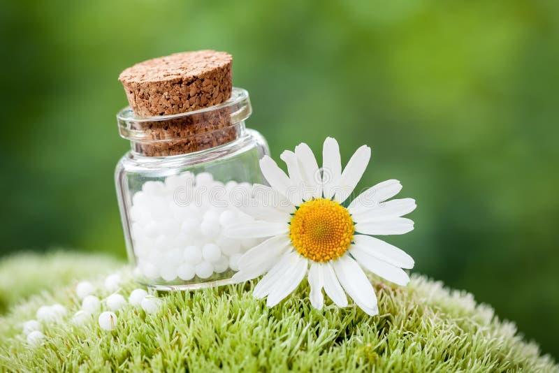 La botella de glóbulos de la homeopatía y la margarita florecen en musgo fotos de archivo libres de regalías