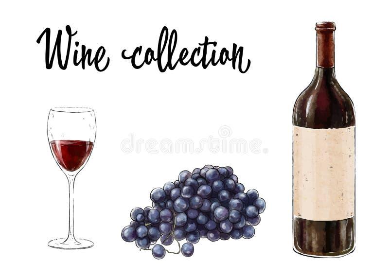 La bottiglia di vino rosso con un vetro e l'uva ragruppano isolato su fondo bianco Raccolta del vino Illustrazione di vettore fotografia stock
