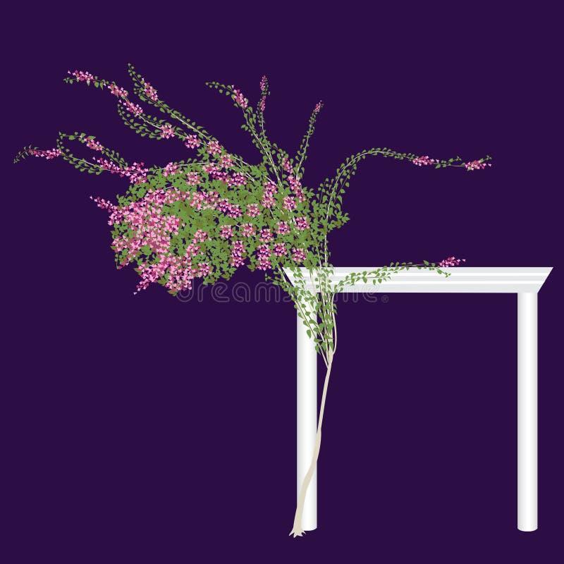 La bouganvillée de floraison illustration libre de droits