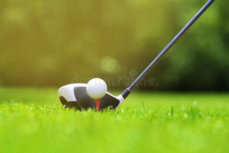 La boule de golf sur la pièce en t devant le conducteur sur un champ vert d'herbe de cours d'or, le conducteur a placé prêt à fra photos libres de droits