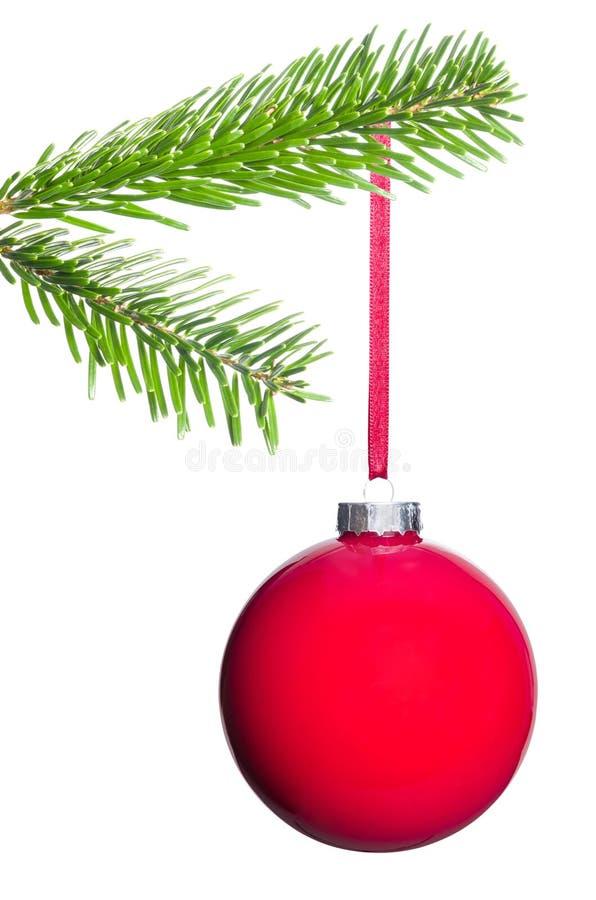 La boule rouge d'arbre de Noël accroche sur la branche de sapin photo stock