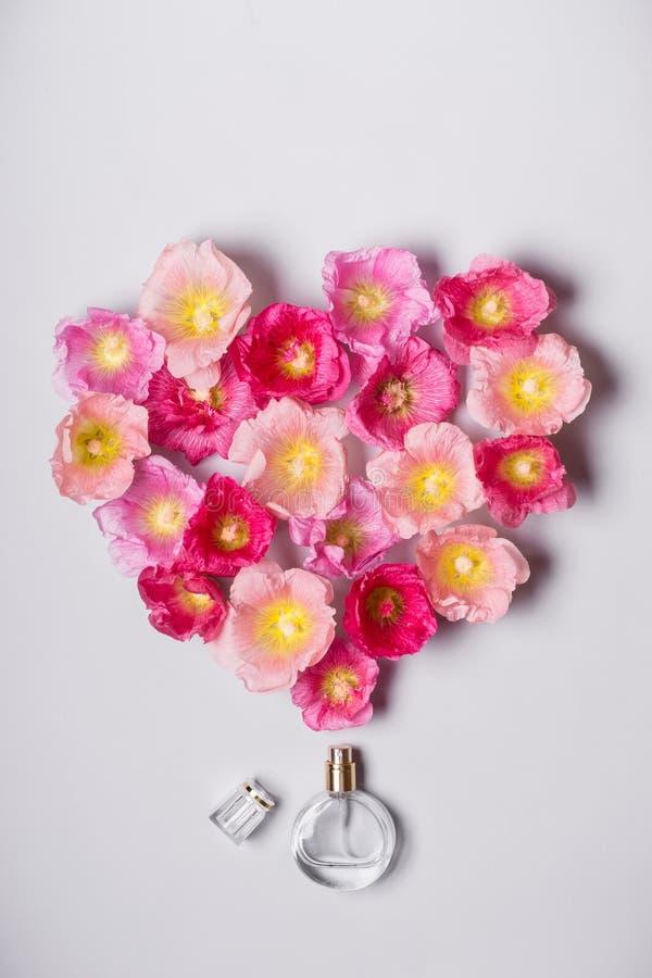 La bouteille de parfum du ` s de femmes et la mauve rose fleurit Concept de beauté de minimalisme images stock
