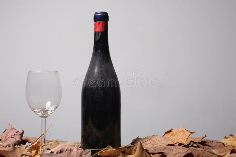La bouteille poussiéreuse du vin chevronné rouge, d'un verre vide et de la mort laisse le repos sur une table en bois avec l'es photographie stock