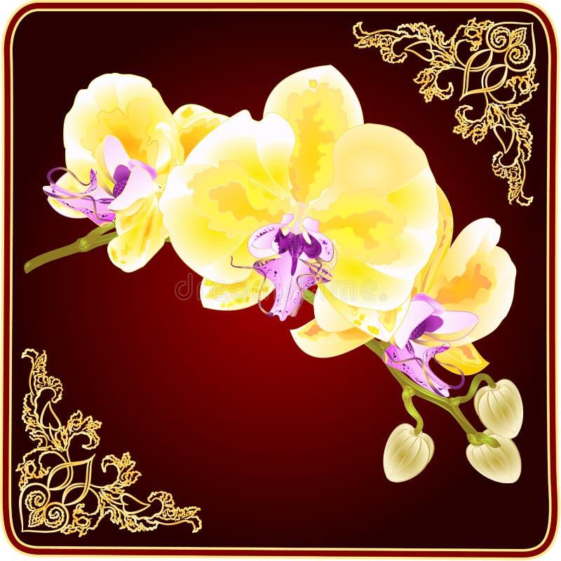 La branche d'orchidée d'or fleurit la tige de plante tropicale de Phalaenopsis et bourgeonne l'illustration de vecteur de vintage illustration libre de droits