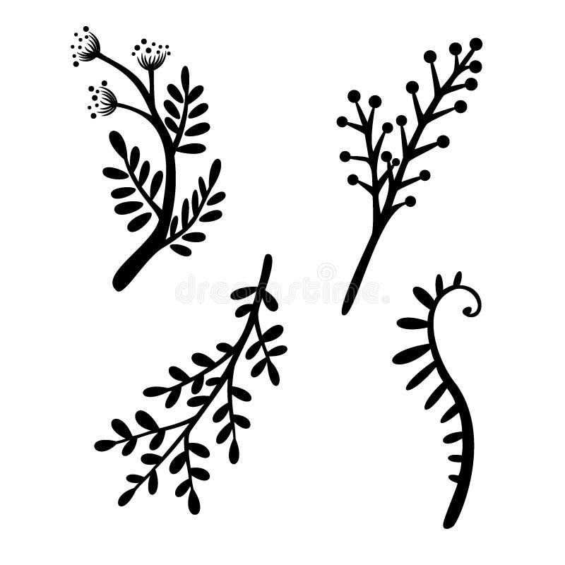 La branche a placé l'illustration florale de vecteur Lignes noires sur le fond blanc Graphismes simples illustration stock