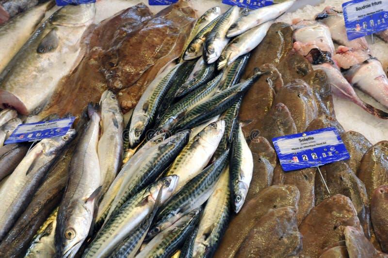 La Bretagne, poisson font des emplettes sur le marché de Pornichet en Loire Atlantiq images stock