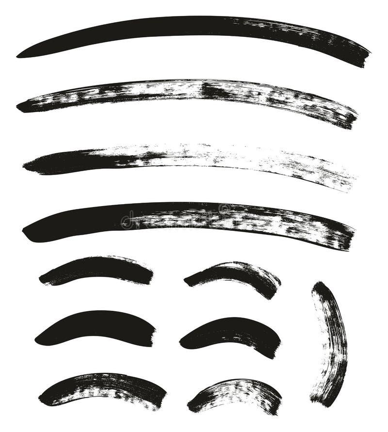 La brocha de la caligrafía curvó líneas arriba detalla el fondo abstracto del vector fijó 80 libre illustration