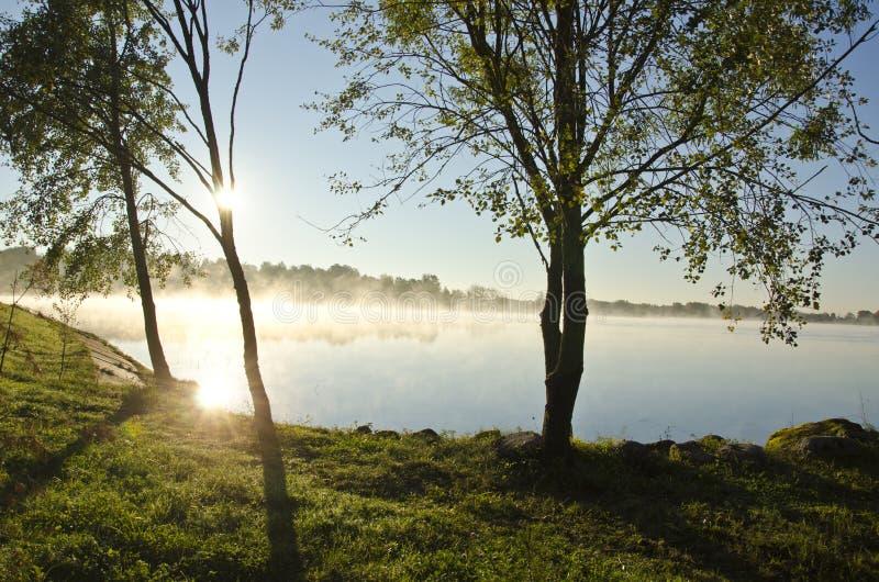 La brume de lever de soleil et de matin l'été finissent le lac image stock