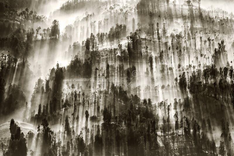 La brume entrant au-dessus du village de Cemoro Lawang pendant le matin a placé à au nord-est de Mt Bromo, Indonésie images stock