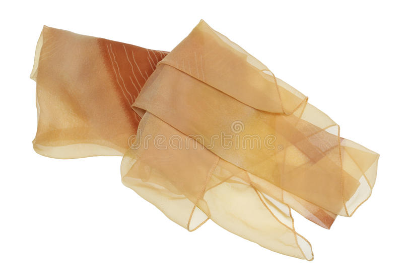 La bufanda de seda celular del ` s de las mujeres de la malla amarilla foto de archivo libre de regalías