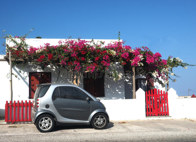 La buganvillea greca tipica della casa di stile dell'isola di Sifnos fiorisce A fotografia stock