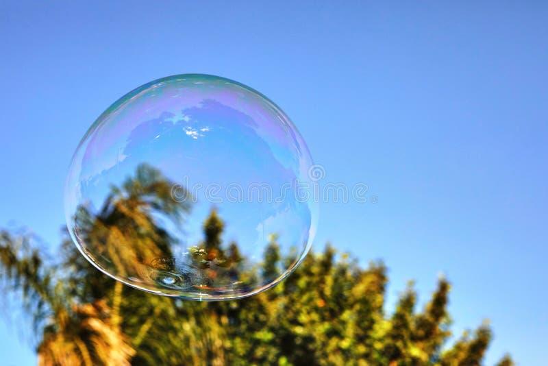 La burbuja de jab?n vuela contra el cielo azul y las palmeras fotografía de archivo