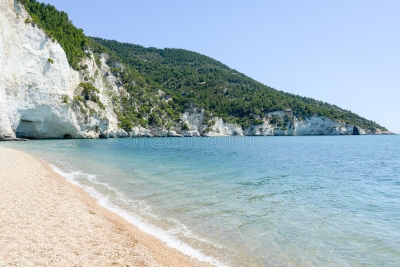 La côte du parc national de Gargano sur la Puglia images stock