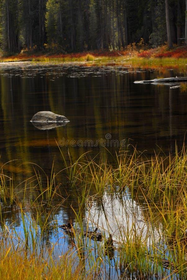 La caída ardiente colorea el reflejo en una charca del parque de Yosemite imagenes de archivo