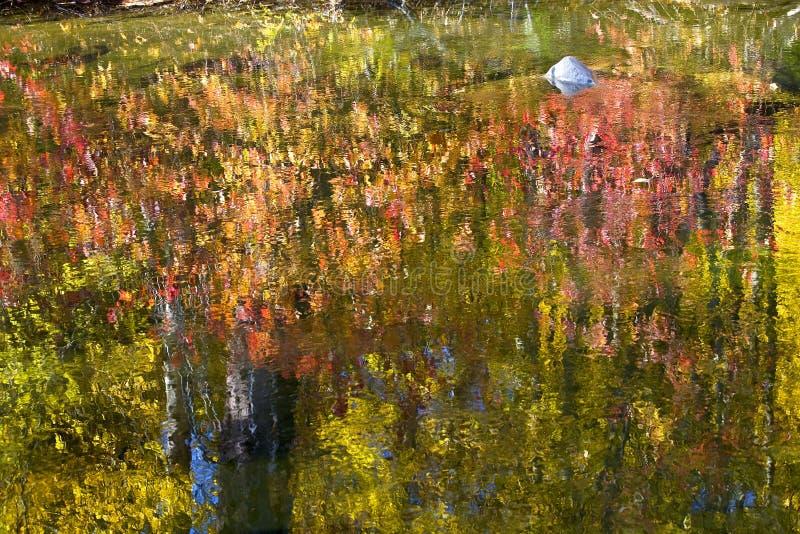 La caída colorea el extracto de las reflexiones del río imagenes de archivo