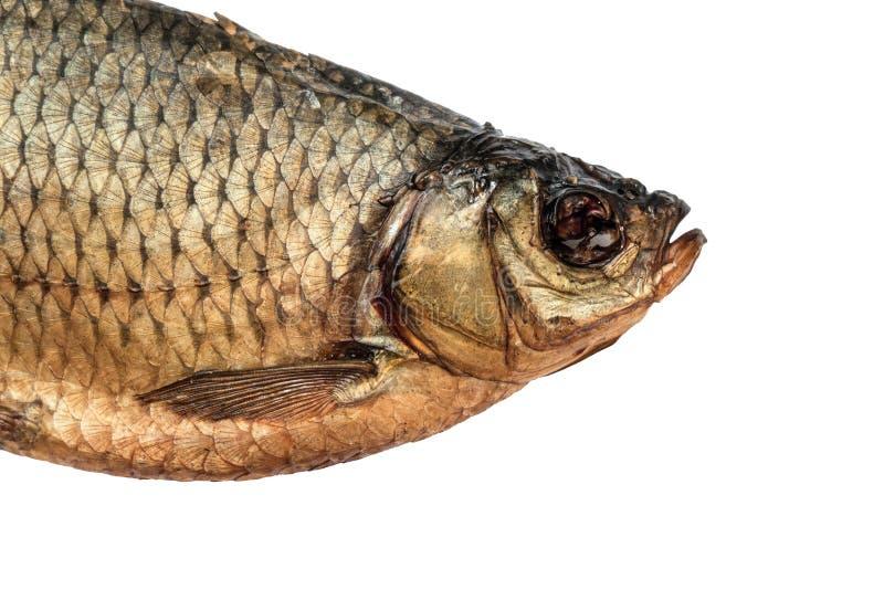 La cabeza sec? el primer salado de los pescados del rudd fotografía de archivo libre de regalías