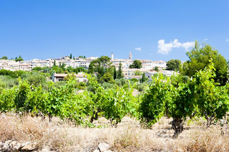 La Cadiere d& x27; Azur met wijngaarden, de Provence, Frankrijk royalty-vrije stock fotografie