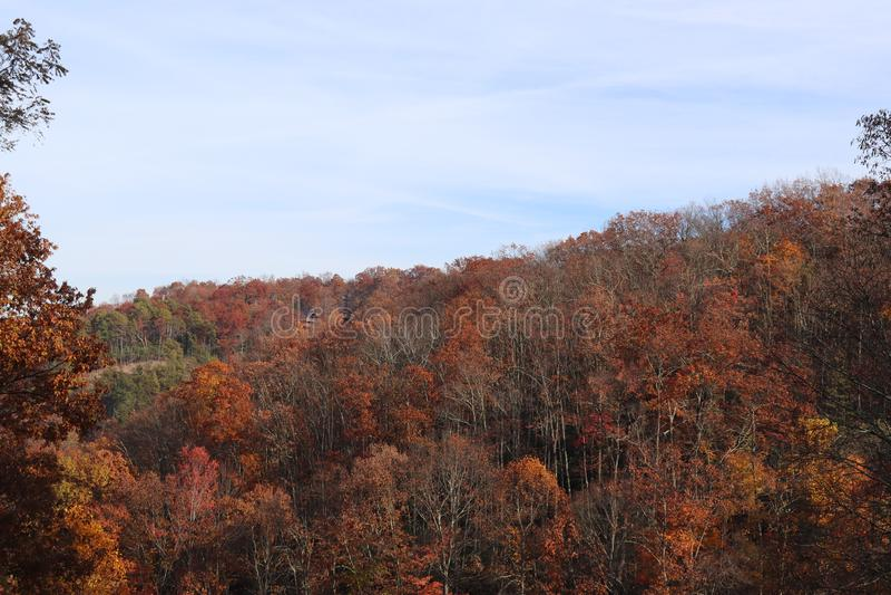 La caduta colora Smokey Mountains fotografia stock libera da diritti