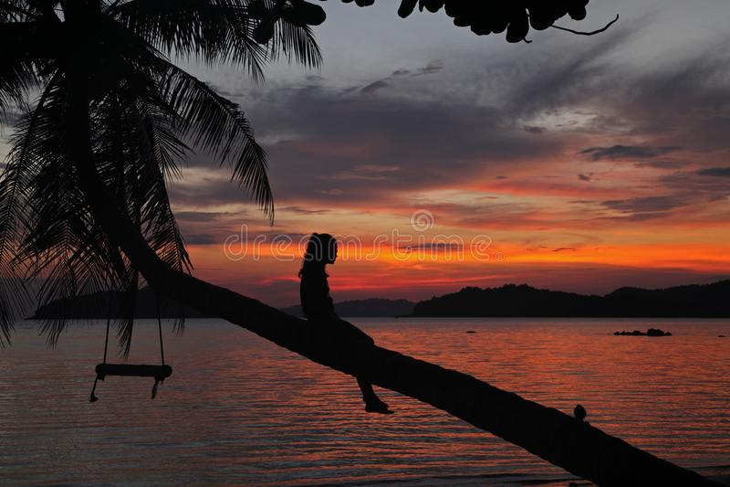 La caduta della culla o dell'oscillazione tramonto dell'ombra del cocco sul bello con si rilassa le donne che la ragazza si siede fotografia stock libera da diritti