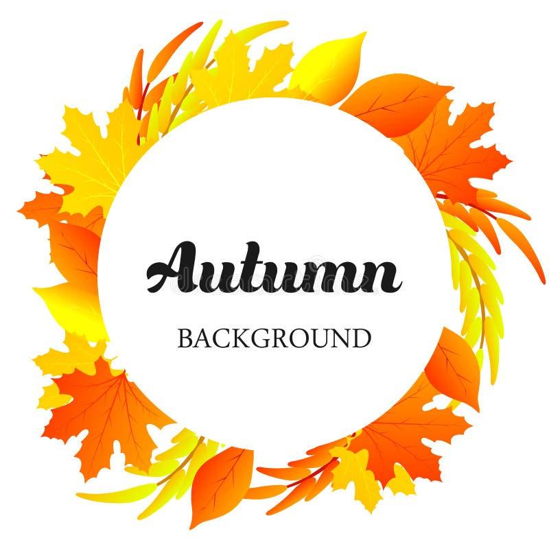 La caduta variopinta naturale della decorazione della pianta del fondo di autunno lascia l'arte Modello all'aperto dell'elemento  royalty illustrazione gratis