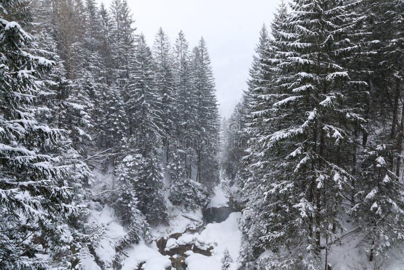 La cala de las montañas imagen de archivo