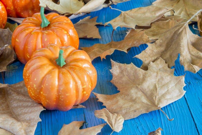 La calabaza hallowen fotos de archivo libres de regalías