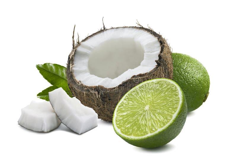 La calce della noce di cocco collega la foglia isolata su fondo bianco immagine stock