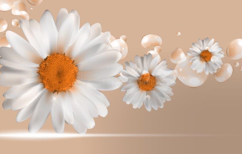 La camomille abstraite fleurit le ressort naturel et le fond d'été illustration libre de droits