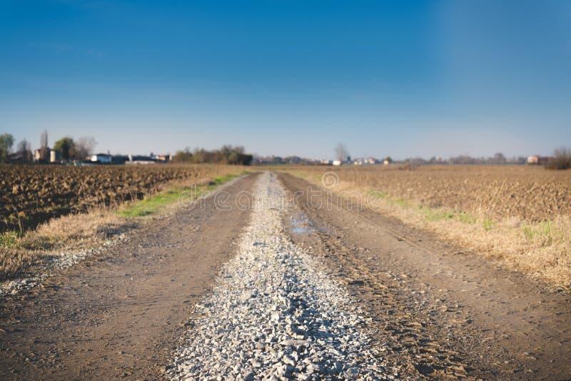 La campagna ha attraversato da una strada non asfaltata fotografia stock