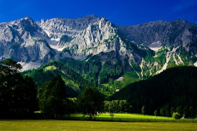 Download La Campagna Intorno Alla Città Di Ramsau Dachstein Immagine Stock - Immagine di roccia, ecologia: 56877627