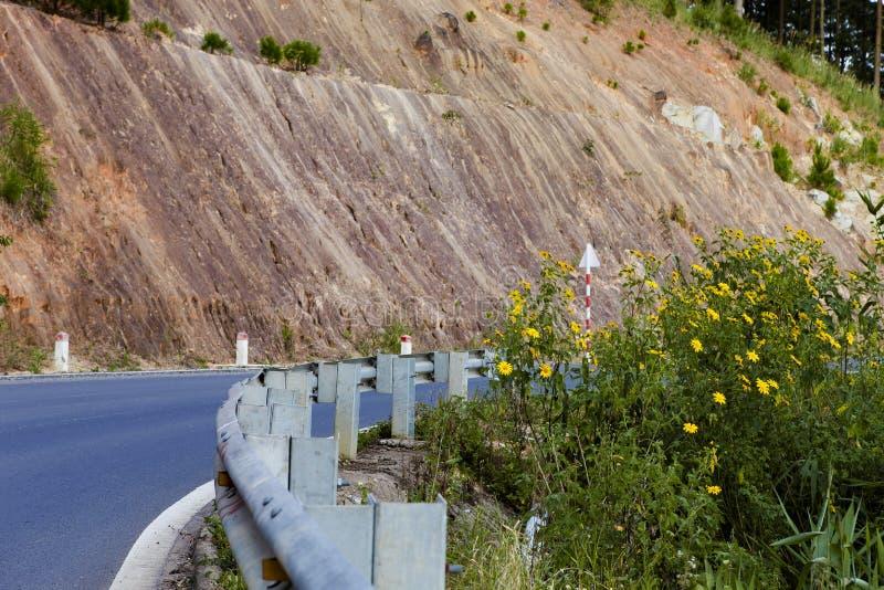 La campagna vietnamita con la fioritura selvaggia del girasole nel giallo lungo la via, Dalat è città per il viaggio, con il paes fotografia stock libera da diritti