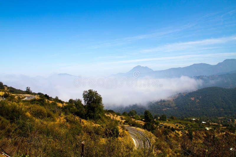 La Campana National Park, Chile stockfoto