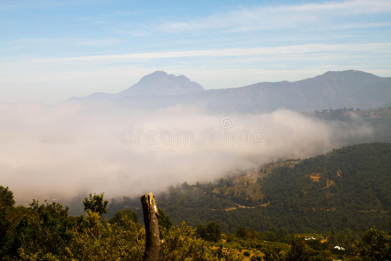 La Campana National Park, Chili stock afbeeldingen