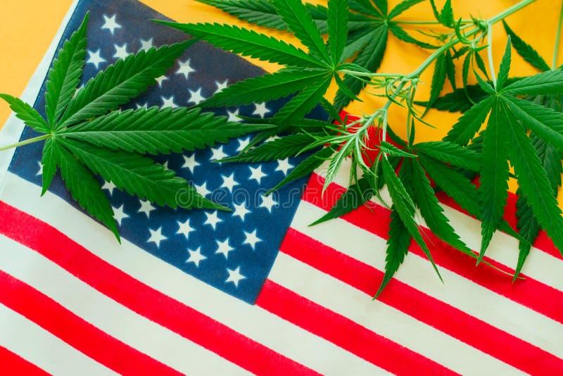 La canapa lascia sulla f la bandiera americana immagini stock