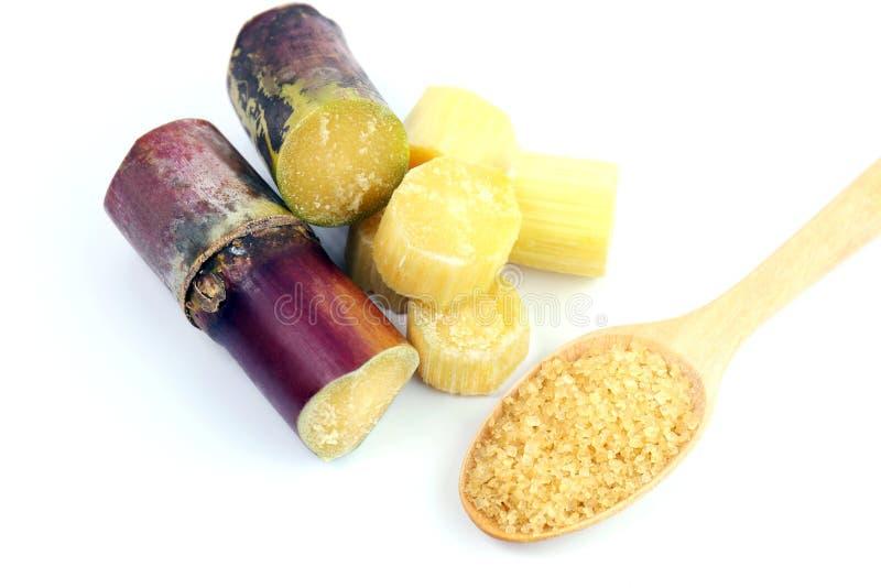 La canna da zucchero e lo zucchero, fustigano fresco, i pezzi di canna da zucchero freschi, il taglio dei pezzi della canna da zu fotografia stock libera da diritti