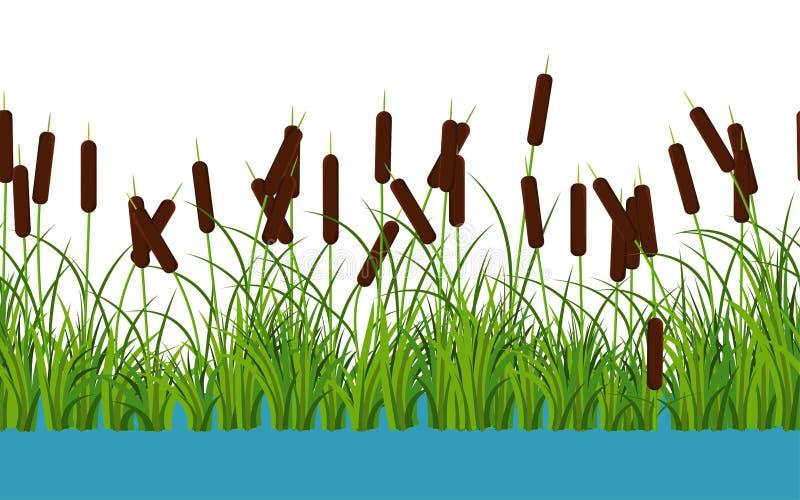 La canna di vettore stacca le piante dal gambo con le foglie e l'erba sul modello senza cuciture del fiume su fondo bianco illustrazione vettoriale