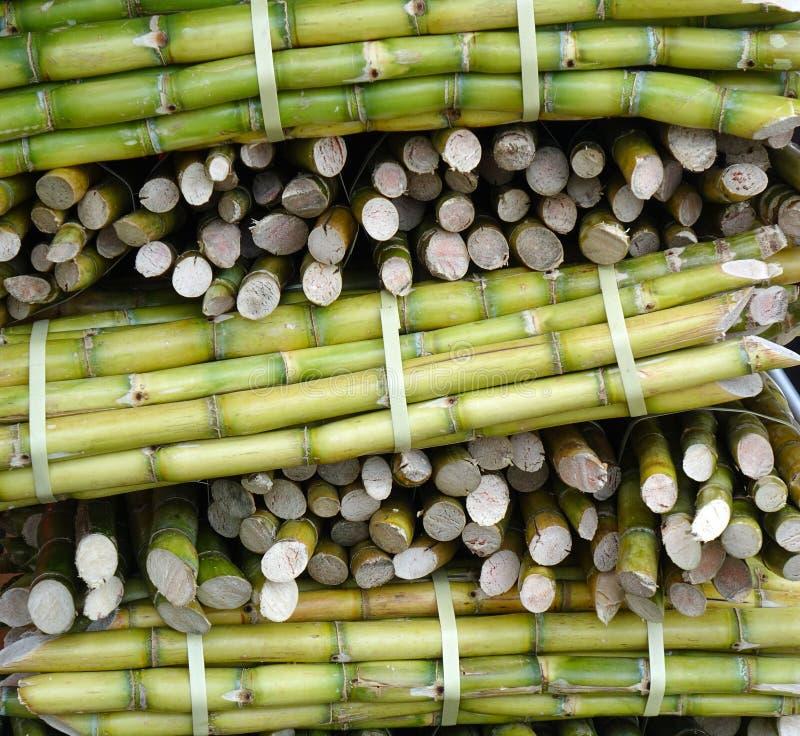 La canne à sucre coupée est préparée à la jugification images stock