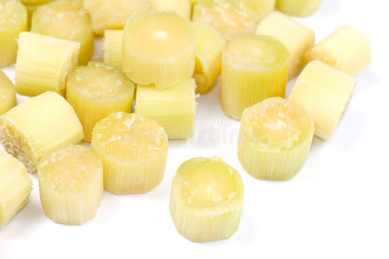 La canne à sucre, morceaux de frais coupé par canne à sucre au-dessus du fond blanc, pile abstraite des morceaux de canne à sucre image stock