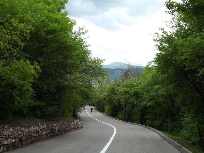 La carretera con curvas abajo fotos de archivo libres de regalías