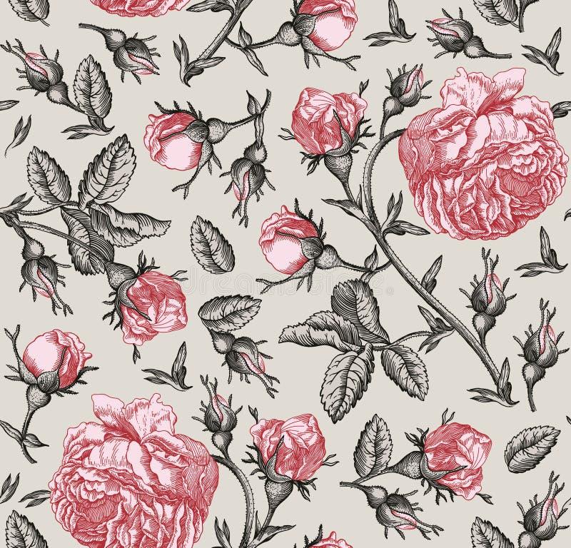 La carta da parati d'annata dei wildflowers delle rose del fondo del modello dei fiori senza cuciture del tessuto che disegna inc illustrazione vettoriale