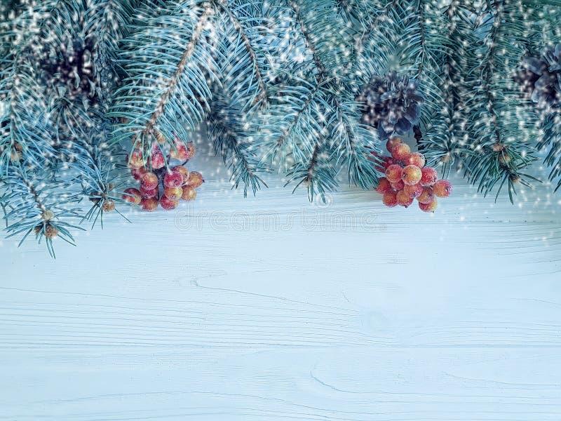 La carta festiva del ramo dell'albero di Natale rasenta il fondo di legno, neve fotografia stock libera da diritti