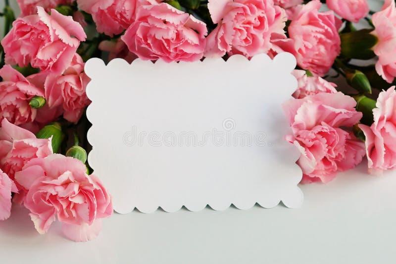 La carte de voeux avec les oeillets roses fleurit sur un fond blanc photographie stock