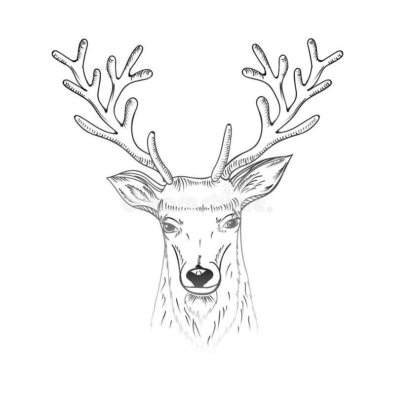 La carte de voeux tirée par la main de lettrage de Noël et de nouvelle année avec des cerfs communs de croquis se dirigent illustration de vecteur