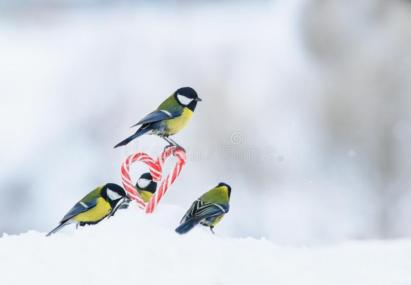 La carte romantique avec beaucoup d'oiseaux a volé aux lucettes douces rouges aux coeurs latéraux dans la neige blanche le jour d image libre de droits