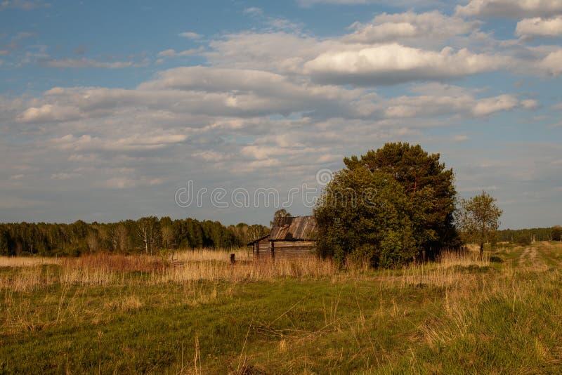 La casa de madera r?stica vieja pasada con un jard?n, coloc?ndose en el campo imagen de archivo libre de regalías