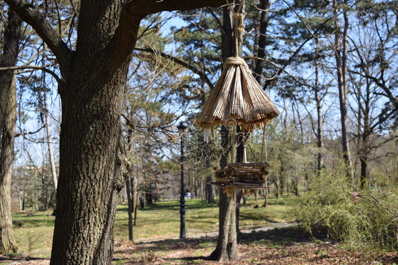 La casa del pájaro fotografía de archivo libre de regalías