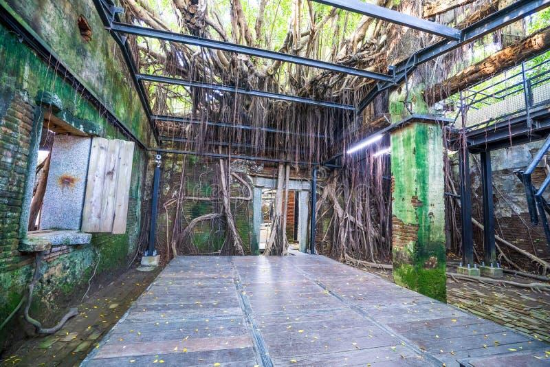 La casa en el árbol de Anping es un almacén anterior en el distrito de Anping, fotos de archivo libres de regalías