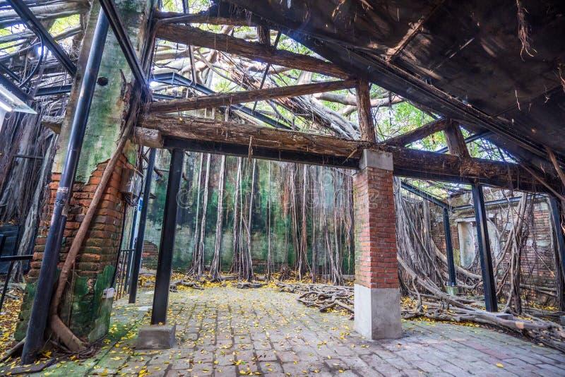 La casa en el árbol de Anping es un almacén anterior en el distrito de Anping, fotografía de archivo